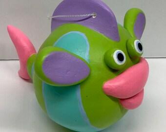 Colorful Big Lipped Fish
