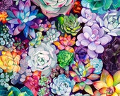 Succulent Painting - Watercolor Painting - Succulent Garden - Floral - Rainbow - Illustration - 8x8 Giclee Print - Home Decor