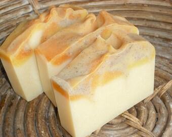 Apple Cider Soap / Apple Soap / Fresh Cider Scent / Fall Autumn / Cold Process Handmade Soap