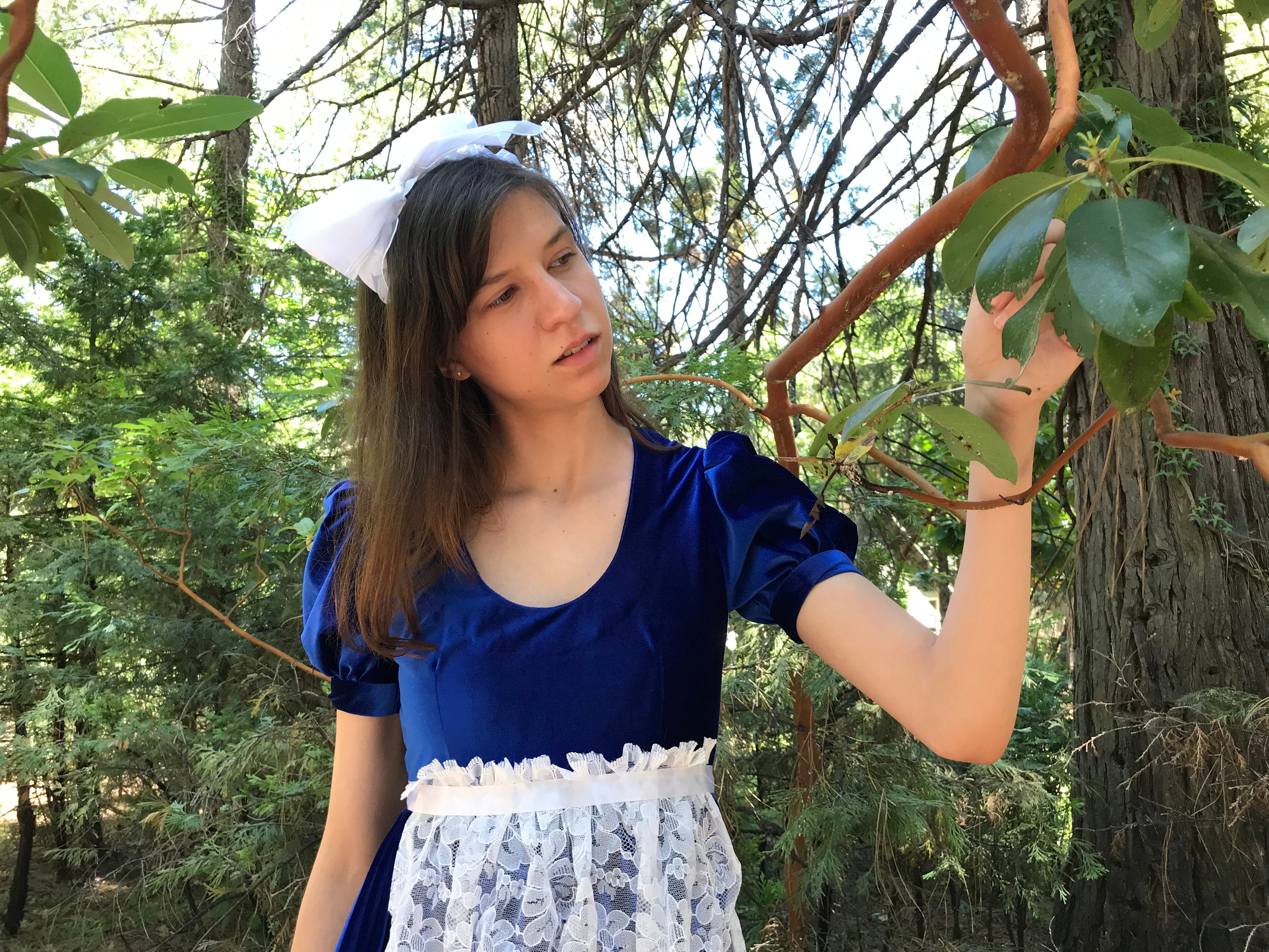 Vintage Aprons, Retro Aprons, Old Fashioned Aprons & Patterns Costume Adult Alice in Wonderland Womens Size 6 Royal Blue Long Dress White Apron Accessories Included One Of A Kind Recycled $61.00 AT vintagedancer.com