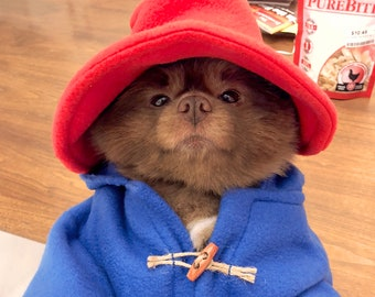 Blue Toggle Coat and Red Floppy Hat ~ XXS through X Large ~ Dog or Bear