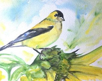 Goldfinch Brunch