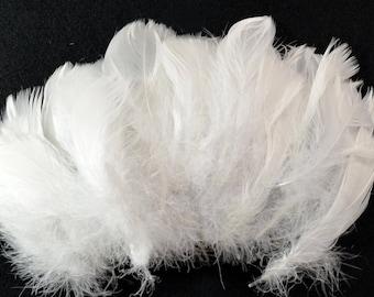 30-40 pcs Goose Satinettes loose feathers, 6 grams, Snow White