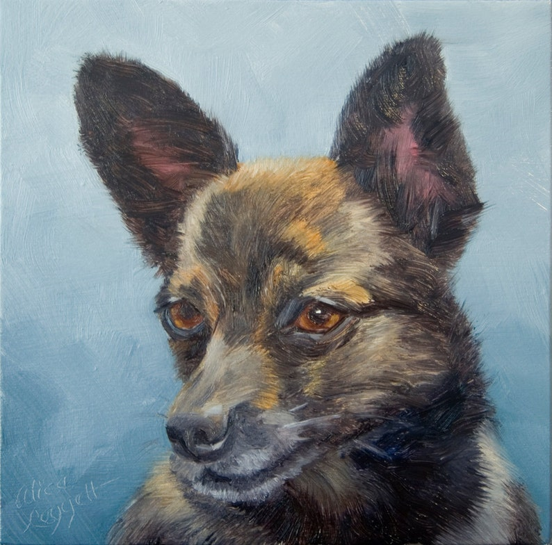 Pomeranian Dachsund 6x6 Original Oil Painting on Panel by image 0