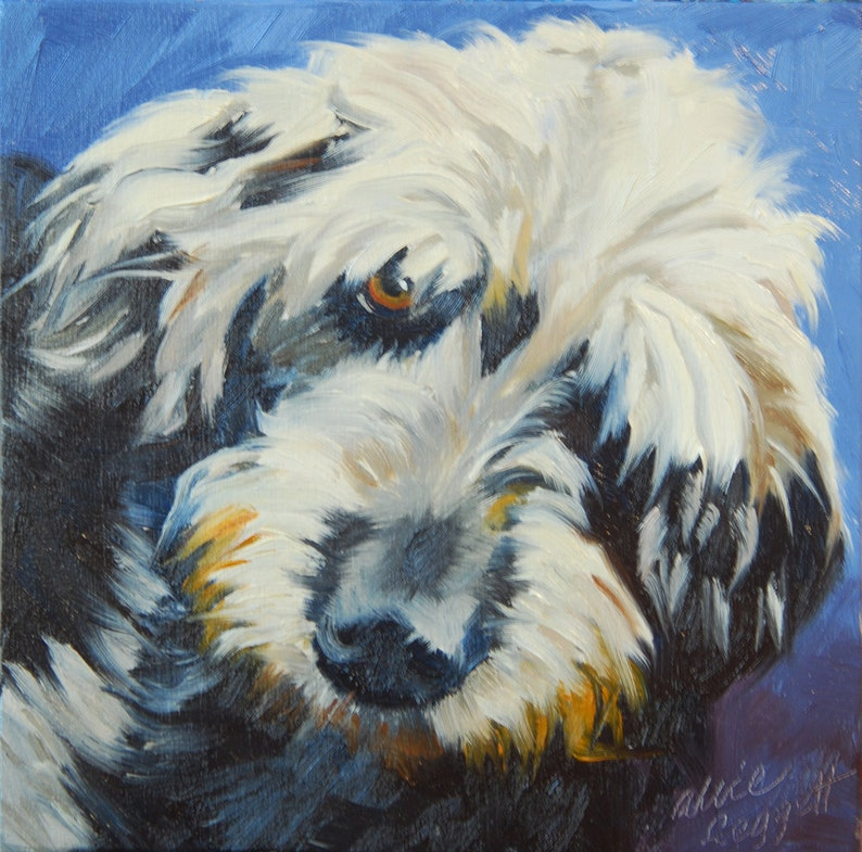 The Dude 6x6 Original Oil Painting on Panel by Alice Leggett image 0