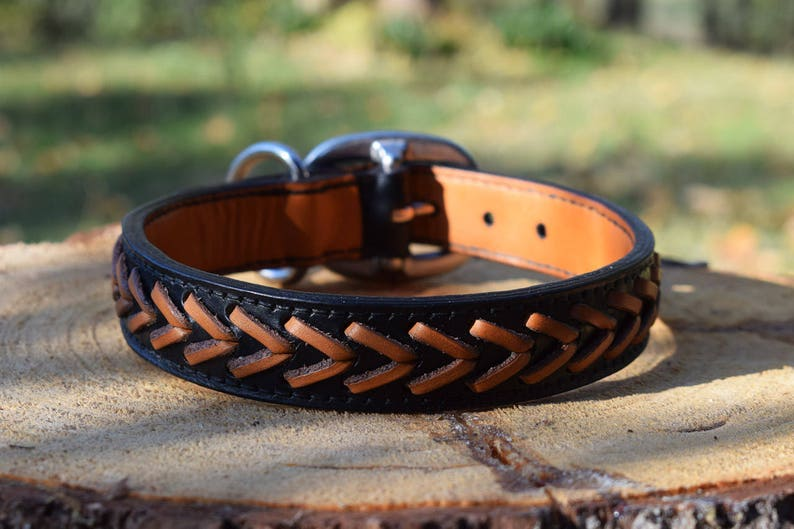 Laced Leather Dog Collar  size M image 0