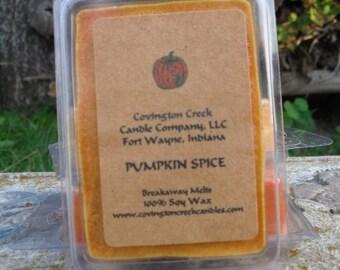Pumpkin Spice Soy 3 or 6 ounce Breakaway Melts