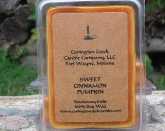 Sweet Cinnamon Pumpkin 3 or 6 ounce Soy Breakaway Melt