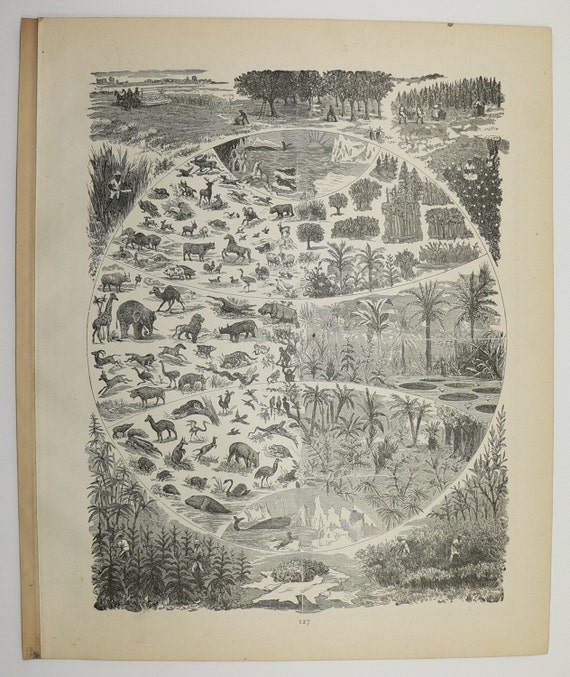 1886 Antique Map Switzerland, Swiss Alps Mountains, Old World Religions  Map, European Art Map, World Traveler Gift, Vintage Switzerland Map