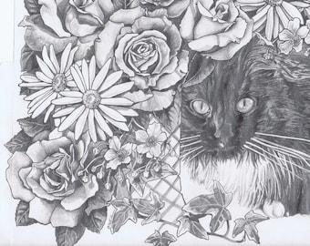 Moondance the Cat Pencil Drawing (Print)