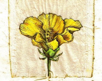 Ink Drawing on teabag 2, flower drawing,teabag art, floral art, spring floral, botanical, yellow flower, original art, original painting