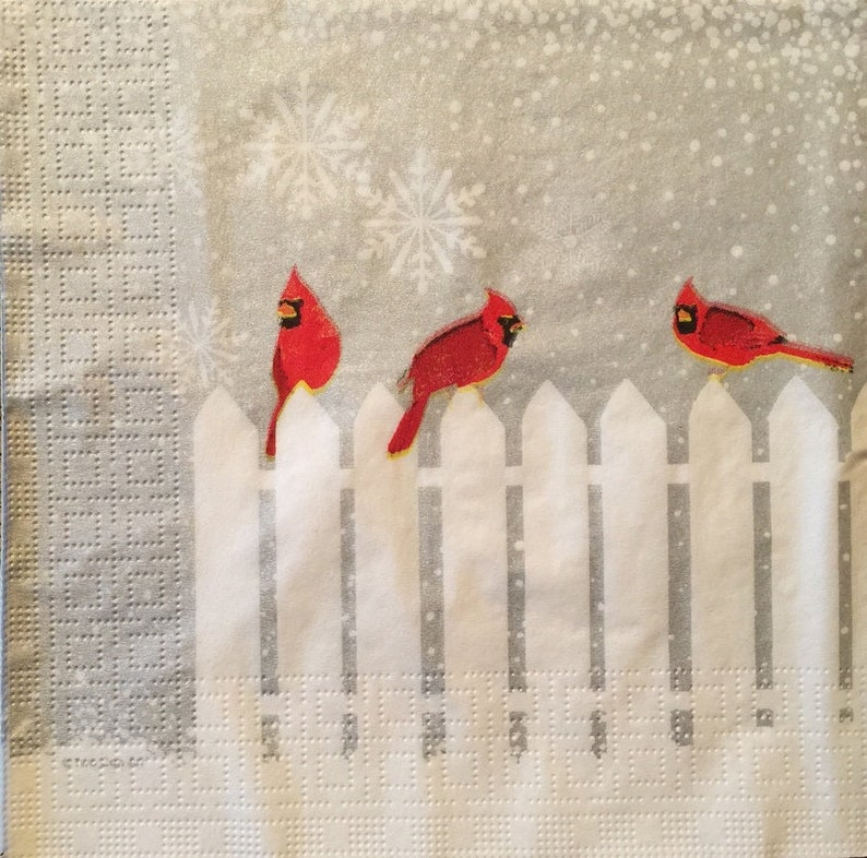 Paper-Craft and Collage 2 Single  Paper Napkins Decor #452 33 cm 13 inches for Decoupage Decoupage Napkins