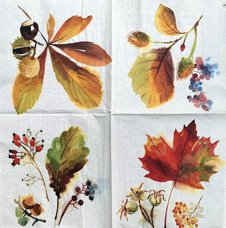 Decor #425-1 for Decoupage 33 cm 13 inches Decoupage Napkins Paper-Craft and Collage 2 Single  Paper Napkins