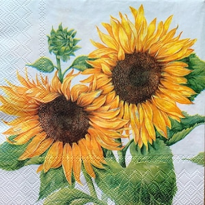 Paper-Craft and Collage 2 Single  Paper Napkins Decor #774 13 inches 33 cm Decoupage Napkins for Decoupage