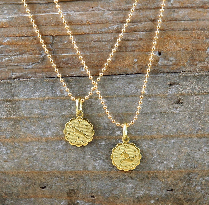 Zodiac Necklace Horoscope Charm Horoscope Necklace image 0