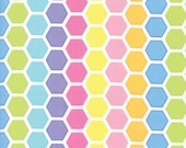 Moda Fabric - Confetti Multi-color hexagons - by Me and My Sister - 1/2 yard - 22322-29 Pastel Print - Cotton Fabric