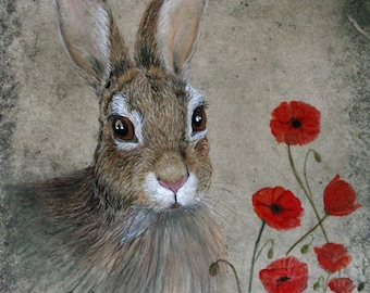 Bunny and Poppies 8x10 inch Giclee
