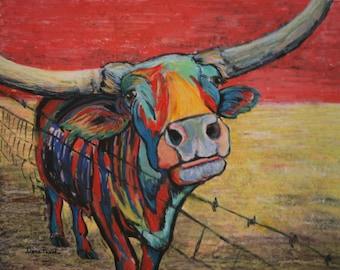 Cactus Jack XL the Texas Longhorn