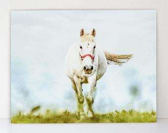 Watercolor Horse in Meadow - Canvas-Textured Art Print - Horse Wall Art -  Modern Farmhouse Decor - Equestrian Gift