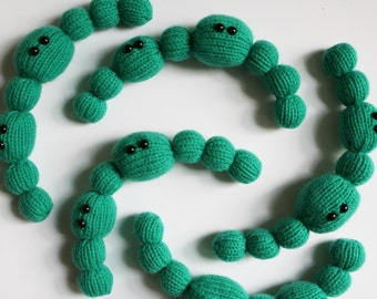 Knit your own Cyanobacteria Filament