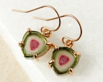 Small Watermelon Tourmaline Slice Earrings - Unique Tourmaline Earrings