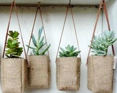 Upcycled burlap hanging baskets. Succulent baskets. Repurposed coffee burlap. Green Abby hanging baskets.