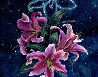 Fine Art Print of Original Watercolor Painting - Stargazer Lilies