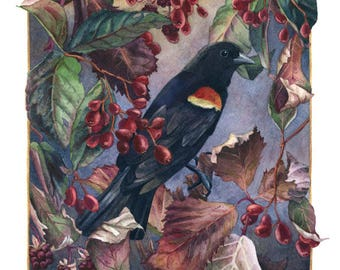 Fine Art Print of Original Watercolor Painting - Autumn Sentinel
