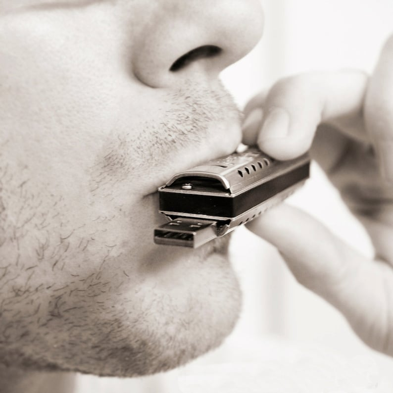 Harmonica Musical Instrument w built-in USB flash drive image 0