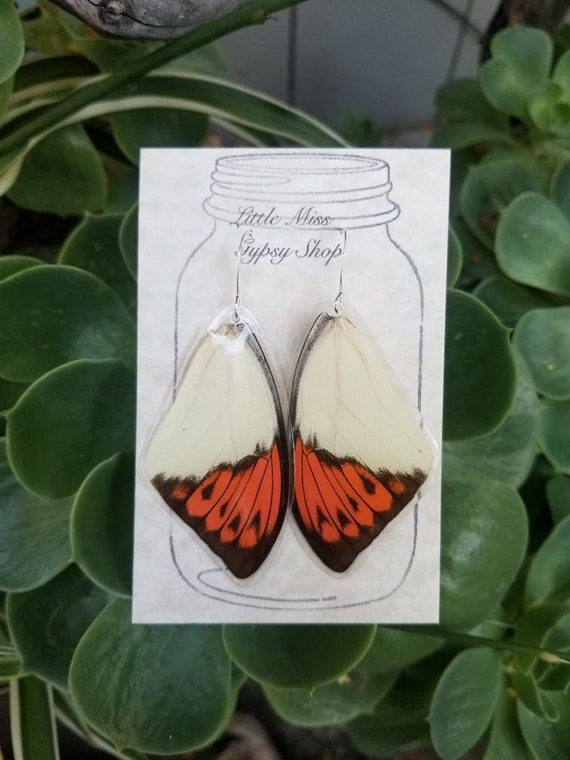 Blue Triangle Butterfly Wing Earrings Cruelty Free Real Wings Small Bohemian Jewelry Minty Green Earthy Organic Jewelry BW055 Natural
