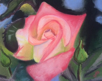 CLEARANCE Spring Rose - Original Pastel Drawing by Jamies Art 8x10