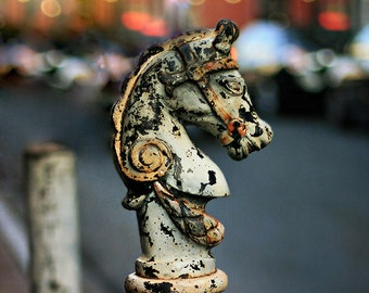 """New Orleans Wall Art. """"Hitching Post #1"""" French Quarter  Photograph. Mardi Gras Affordable Home Decor. 8x10, 11x14, 16x20, 20x24, 24x30"""