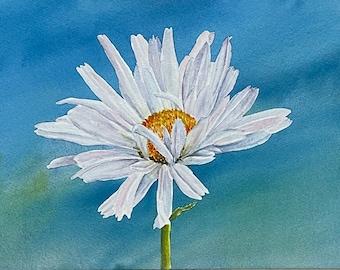 Daisy Flower - Watercolor