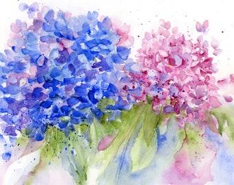 Hydrangeas - Cape Cod - Watercolor Print