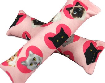 Eco-Kicker Catnip Cat Toy - Valentine Cats
