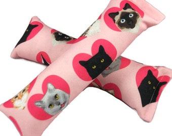 Eco-Kicker Catnip Cat Toy - Valentine Cats