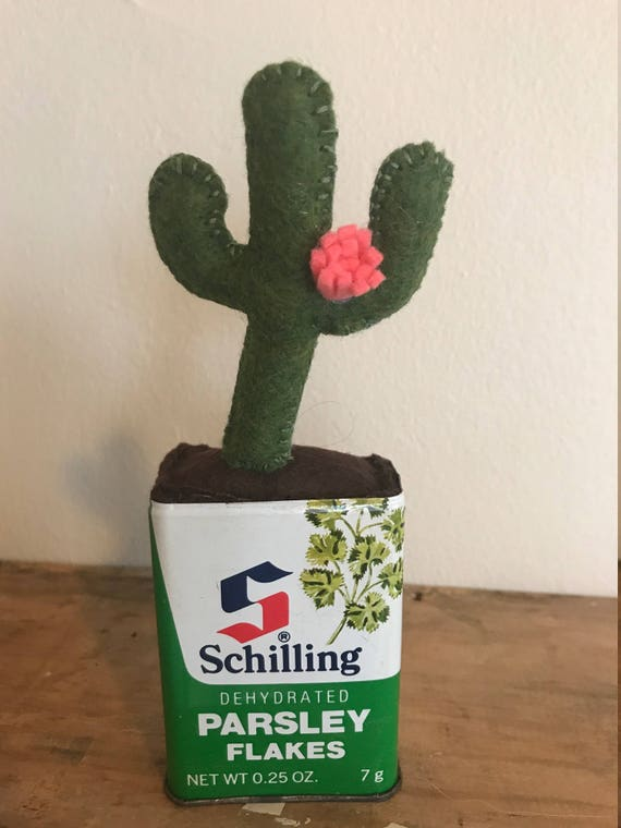 Mini Cactus Vert Avec Fleur Rose En Etain De Persil Schilling