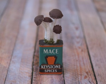 Plushy Brown & White Fake Mushrooms in Vintage Mace Keystone spice tin // Housewarming Gift // Fall Decor