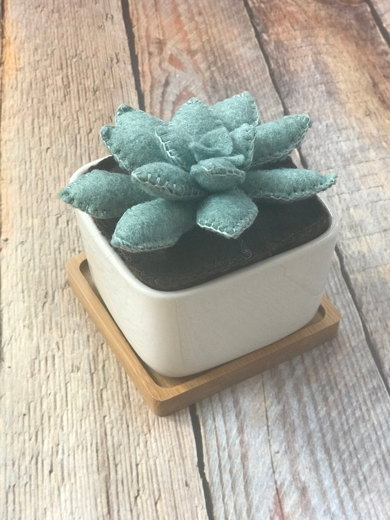 Green Succulent in a mid-century modern planter // Great Gift image 0