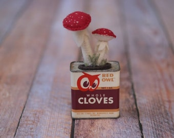 Red Toadstool Mushrooms in a Vintage Red Owl Cloves spice tin  // Housewarming Gift // Back to School // Classroom Office Accents