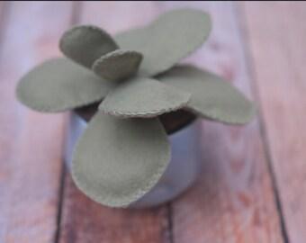 Green Felt Fake Succulent in small ceramic planter // Adorable Birthday Housewarming Gift // Back to School Gift // Classroom Decor