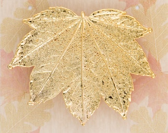 Real Full Moon Maple Leaf Dipped In 24k Gold Pins