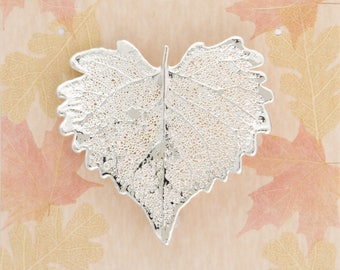 Real Cottonwood Leaf Dipped In Silver Pins - Bar Pins - Brooches - Real Dipped Leaves - Carded