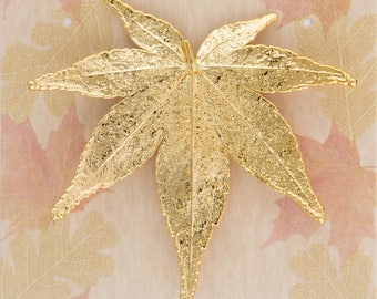 Real Japanese Maple Leaf Dipped In 24k Gold Pins