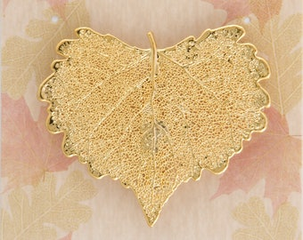 Real Cottonwood Leaf Dipped In 24k Gold Pins - Bar Pins - Brooches - Real Dipped Leaves - Carded