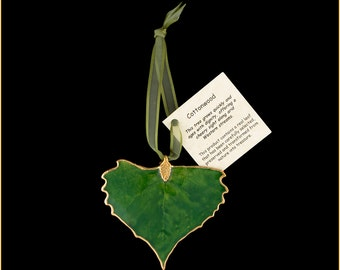 Green Lacquer Real Cottonwood Leaf Ornaments with Ribbon and Hang Tag - Real Dipped Leaves - Christmas Ornaments