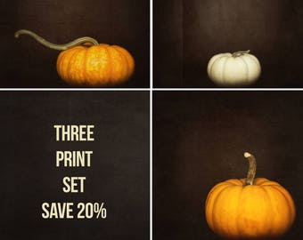 Pumpkin Photography, Nature Print, Holiday Decor, Orange Wall Art - Three Print Set, Artwork for Walls, White Pumpkins, Fine Art, Square Art