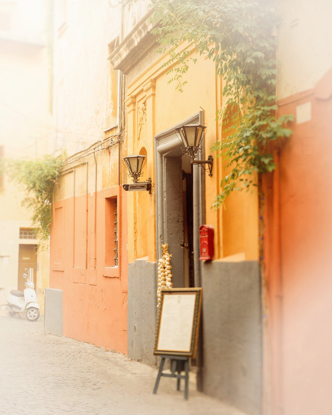 Trastevere Rome Italy Photograph Travel Photography Wall | Etsy