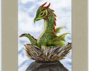 Nested Dragon