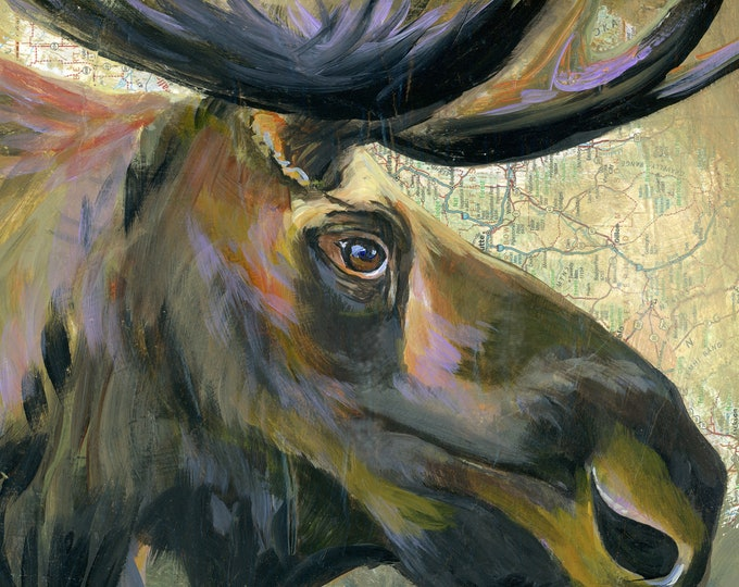 Bull Moose print on canvas